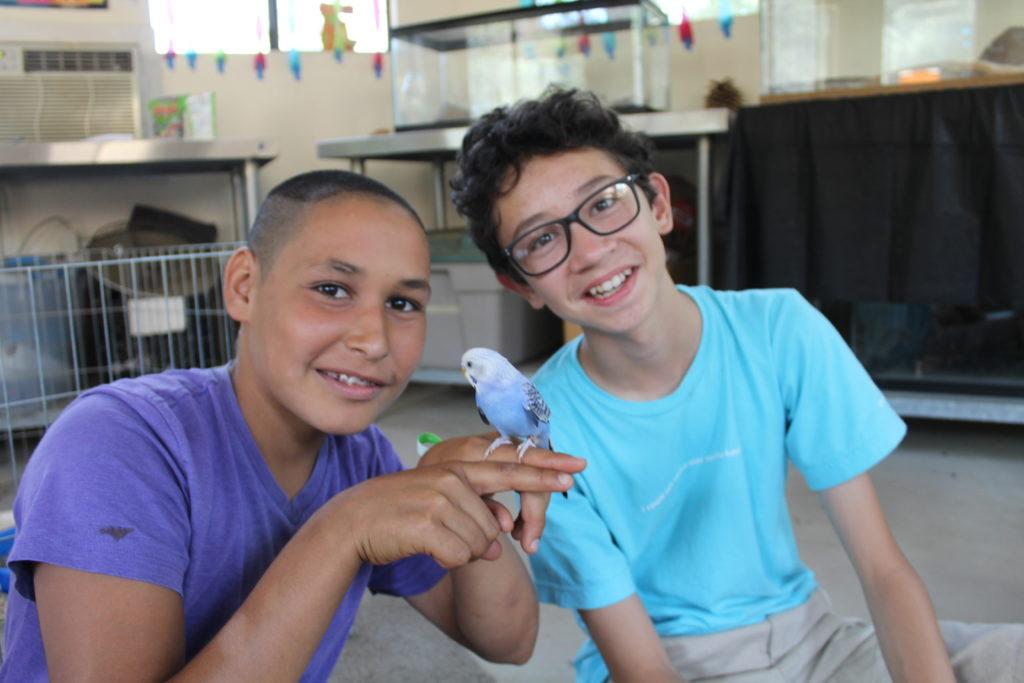 Boy Campers at Camp Bob Waldorf